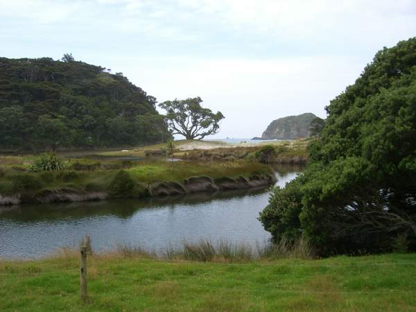 Harataonga Bay - Great Barrier Island