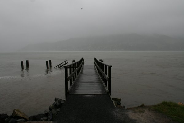 Flooded Otago Peninsula