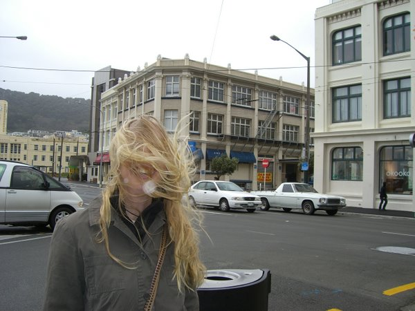 Windy Wellington